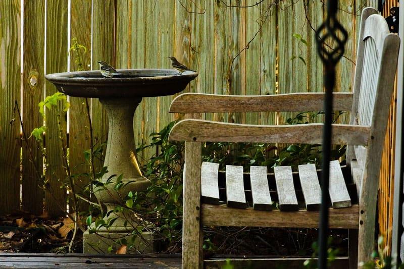 bird bath by fence