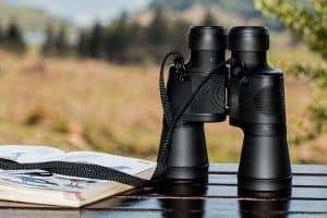 Best Value Binoculars for Bird Watching (Top 5 in 2021)