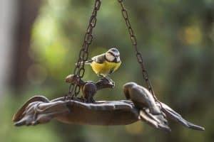 25 Novelty and Unique Bird Feeders