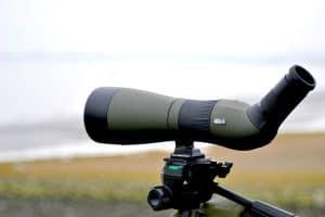 Best Spotting Scopes For Birding (Top 5)