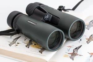 Best Binoculars For Bird Watching (Top 5 in 2020)