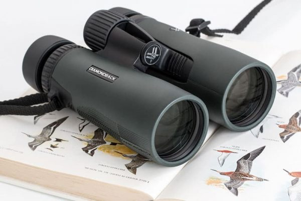 Best Binoculars For Bird Watching (Top 5 in 2021)